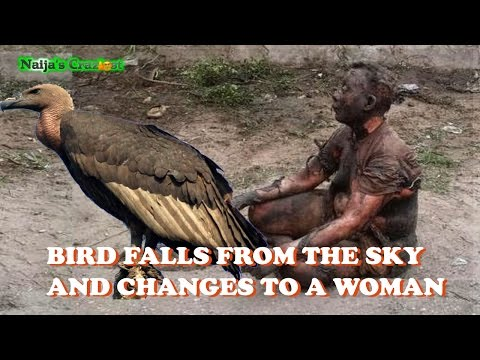 0 28 - Watch This LOL: Strange Bird Falls and Turns To A Woman In Oshodi, Lagos.Witchcraft is Real - Hilarious Satire