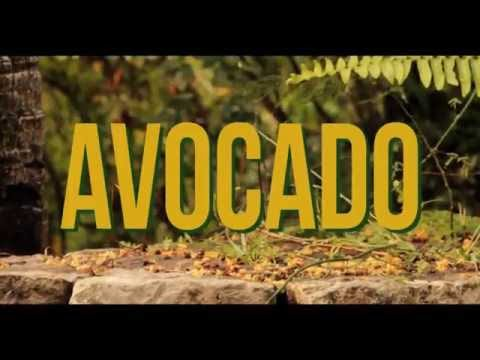 0 43 - Video: Jah9 - Avocado   Jamaica Reggae/Dancehall
