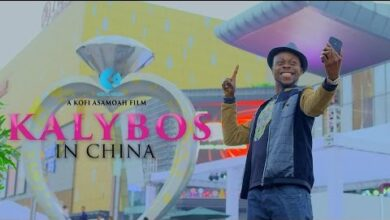 Photo of ▶Video: A Must Watch – Kalybos In China Movie – Rib cracking Trailer