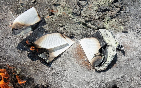 burnt - Photos: Angry South African youth burns down church of pastor who makes his members eat grass, snakes