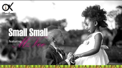 Photo of Okyeame Kwame ft MzVee – Small Small (Official Video) +Mp3/Mp4 Download
