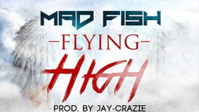 Photo of Mad Fish – Flying High