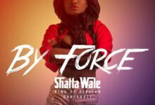 Photo of Shatta Wale – By Force