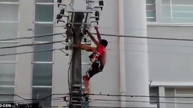 Photo of Video: Man gets electrocuted after climbing an electric pole to entertain people at a political rally