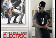 Photo of Flowking Stone ft. Cabum – Electric