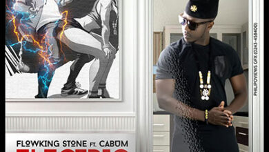 Flowking Stone ft. Cabum - Electric