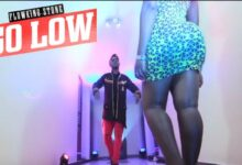 Photo of Flowking Stone – Go Low (Music Video)+mp3/mp4 Downloads