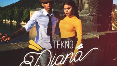 Photo of Tekno - Diana