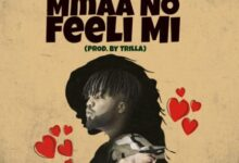 Photo of Lord Paper – Mmaa No feeli Mi ft. Jason Ela