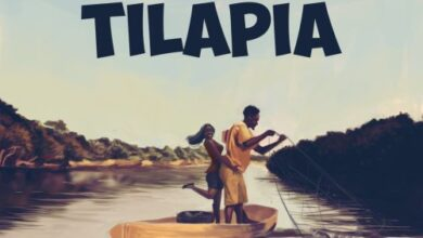 Photo of Mr Eazi - Tilapia ft. Medikal (Prod. by Delb)