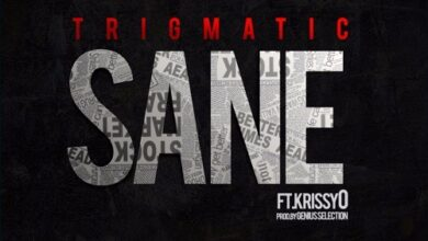 Photo of Trigmatic – Sane ft. KrissyO (Prod. by Genius Selection)