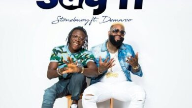 Photo of Stonebwoy Burniton ft. Demarco - Say It