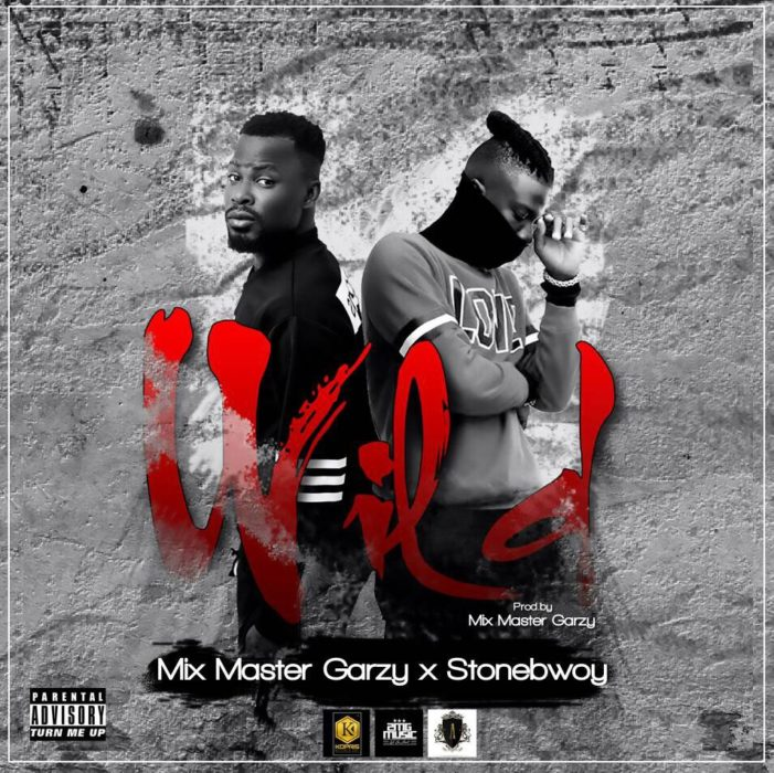 Mix Master Garzy ft. Stonebwoy Wild - Mix Master Garzy ft. Stonebwoy - Wild [Download mp3]