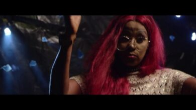Photo of Star Zee ft. Stonebwoy – Leader (Official Video)