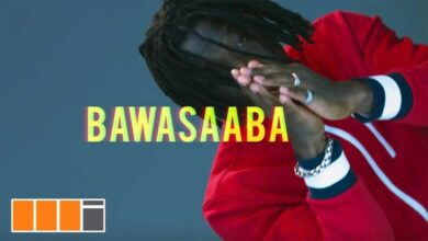 Photo of Stonebwoy - Bawasaaba (Official Vibes Video)