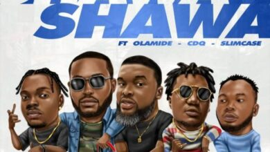 Photo of DJ Neptune – Shawa Shawa ft. Larry Gaga x Olamide x CDQ x Slimcase