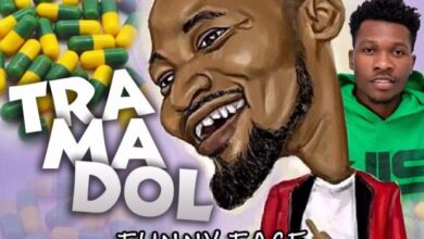 Photo of Funny Face ft. Article Wan – Tramadol
