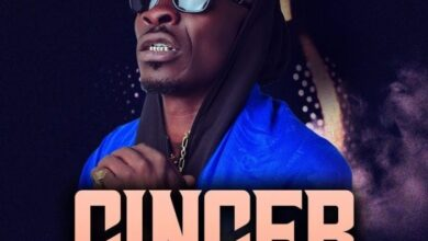 Photo of Shatta Wale – Ginger (Prod. By MOG)