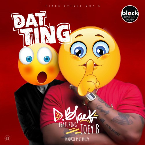 D Black ft. Joey B Dat Ting - D Black ft. Joey B - Dat Ting (Prod. DJ Breezy)