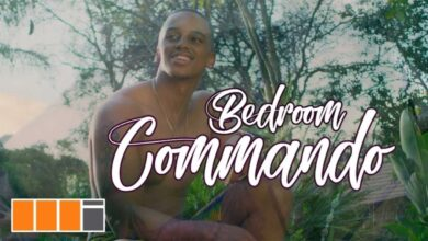 Photo of Wendy Shay - Bedroom Commando (Official Video)