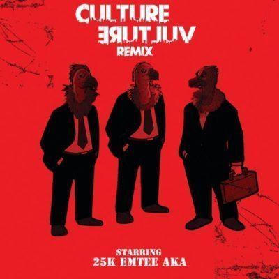 25k ft AKA Emtee – Culture Vulture Remix - 25k – Culture Vulture (Remix) ft. AKA, Emtee