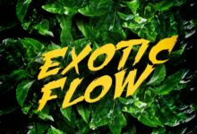 Omar Sterling – Exotic Flow (Prod by Killmatic)