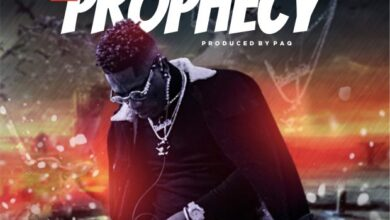 Photo of Shatta Wale – The Prophecy