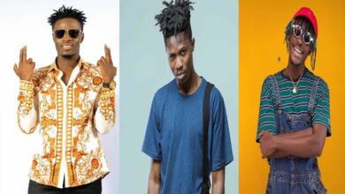 Photo of Fancy Gadam – Hook Up Girl Ft. Kwesi Arthur, Kofi Mole, Colours Man
