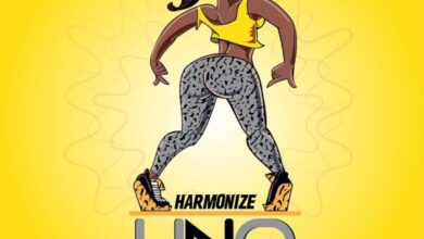 Photo of Harmonize – Uno