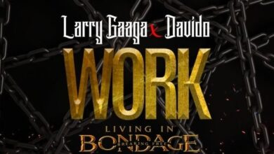 Photo of Larry Gaaga ft. Davido – Work (Living In Bondage)
