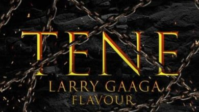 Photo of Larry Gaaga – Tene ft. Flavour