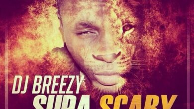Photo of DJ Breezy – Supa Scary ft. Shatta Wale, D-Black, Sarkodie, Mugeez, E.L