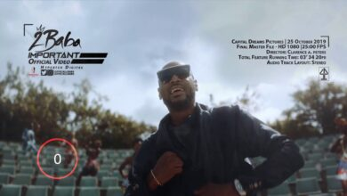 Photo of 2Baba - Important (Video)