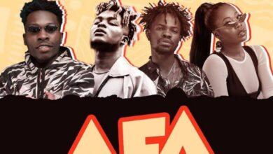 Photo of Article Wan – Afa ft. Fameye, Quamina MP, Freda Rhymz