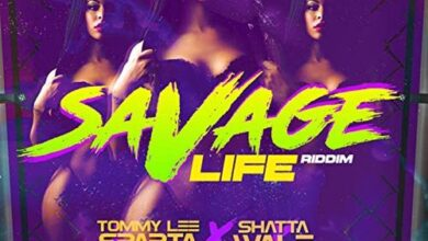 Photo of Tommy Lee Sparta x Shatta Wale – Savage Life (Prod by Damage Musiq)