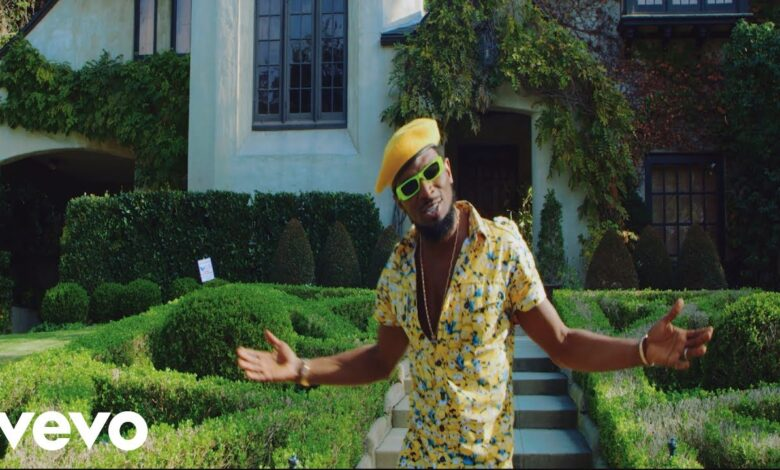 Photo of D'Banj - Everything Is Ok [Official Video]