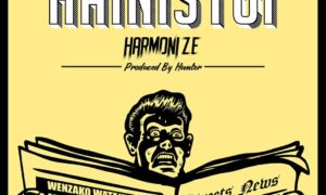 Harmonize Hainishtui 300x180 - Harmonize – Hainistui