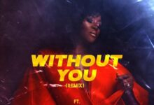 Photo of DJ Tunez ft. Omawumi – Without You (Remix)