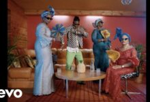 Photo of Stonebwoy – African Party (Official Video)