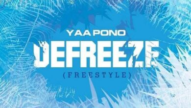 Photo of Yaa Pono – Defreeze (Freestyle) (Prod. by UndaBeatz)