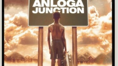 Photo of Stonebwoy: Anloga Junction Album
