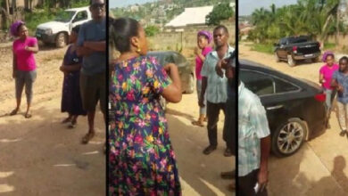 Photo of Alleged video of Joyce Blessing fighting for custody of her kids?