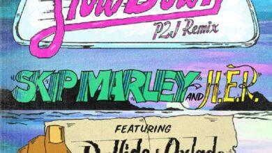 Photo of Skip Marley – Slow Down (Remix) ft. Davido