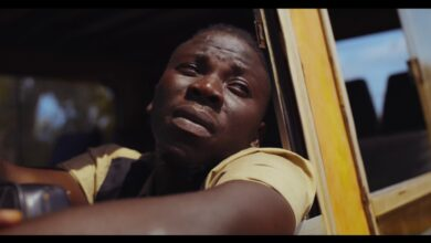 Photo of Stonebwoy - Le Gba Gbe [Alive] (Official Video)