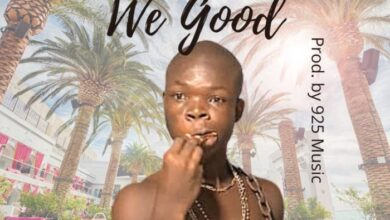 Photo of AY Poyoo – We Good (Official Video) +Mp3/Mp4 Download