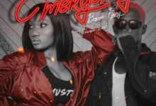 Photo of Wendy Shay – Emergency ft. Bosom P-Yung