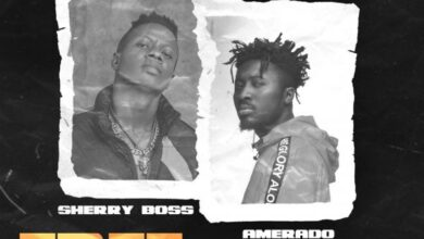 Photo of Sherry Boss ft. Amerado – Free The Mic