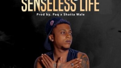 Photo of Ara-B – Senseless Life (Prod. Paq x Shatta Wale)