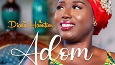 Photo of Diana Hamilton – Adom Grace