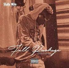 Photo of Shatta Wale – Full Package (Samini Diss)